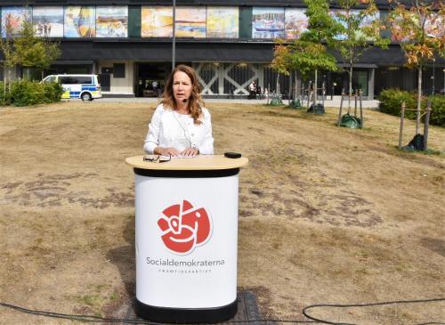 Anita Mattson, kandidat till kommunstyrelsens ordförande