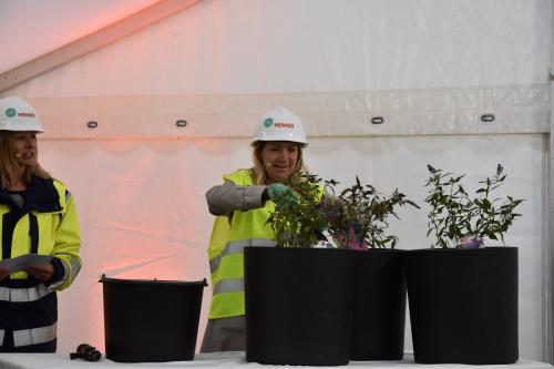 Anita Mattsson (S) planetar träd som sedan ska stå vid äldreboendet