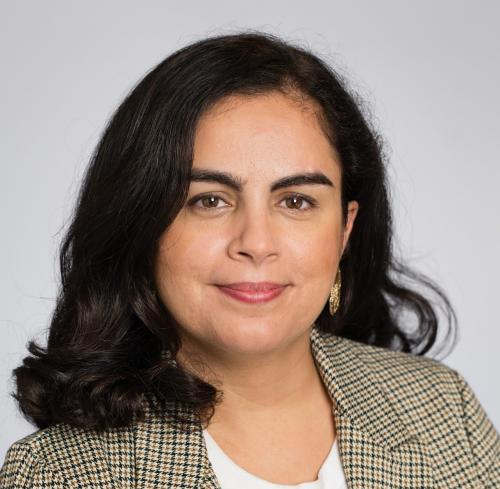 Talla Alkurdi, regionoppositionsråd i Region Stockholm