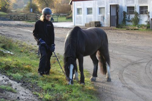 Isak tillsammans med hästen Harry.